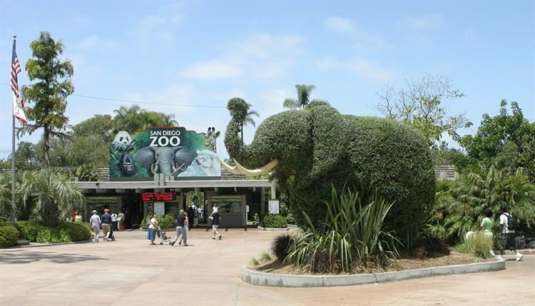 حديقه حيوان بازل