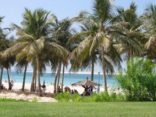 حديقة شاطئ الجميرة في دبي