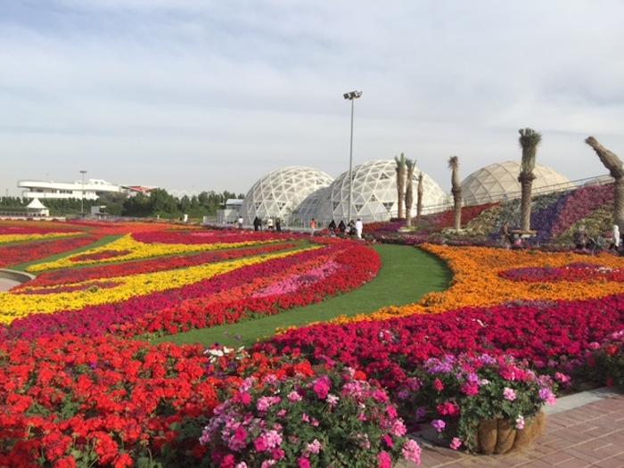 حديقه الملك عبد الله