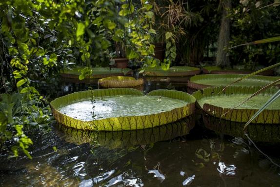 حدائق اوسلو