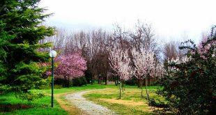 تعرف على حديقة النباتات بوتانيك بورصة وافضل الانشطة بها