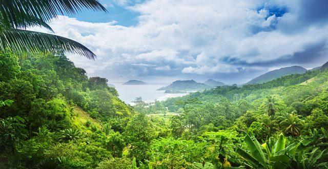 السياحة فى جزيرة سيشل وافضل الاماكن السياحية بها - جولة