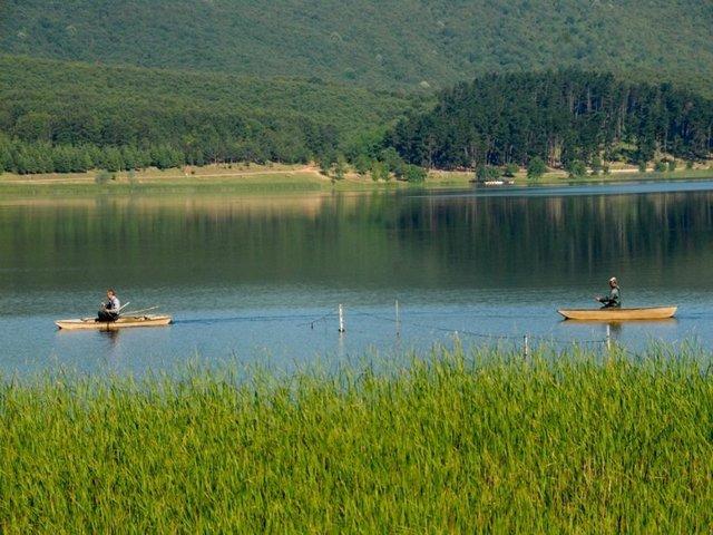 اهم الانشطة فى البحيرة