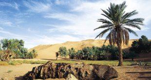 السياحة البيئية في السعودية