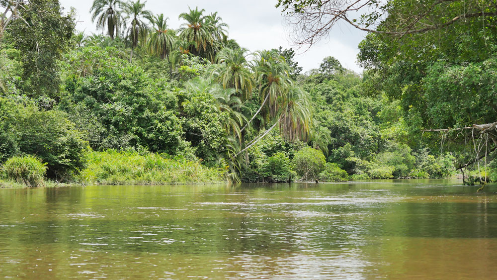 عاصمة الكونغو وكل المعلومات عنها