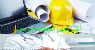 أكثر المهن المطلوبة في مصر